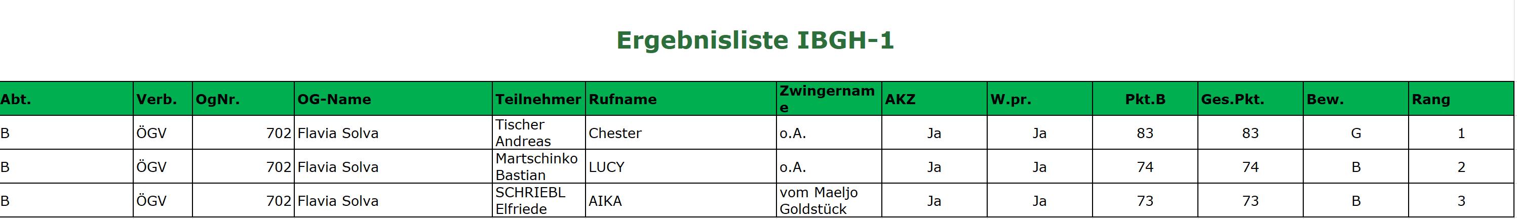 2019-11-27_Herbstprüfung 2019_IBGH1