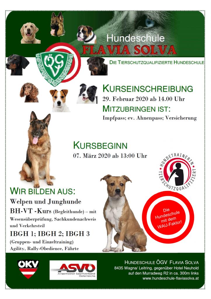 Hundeschule Flavia Solva Plakat_2020